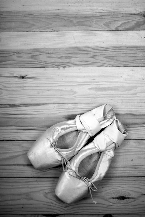Ballet Pointe Shoes Images Stock Photos amp Vectors