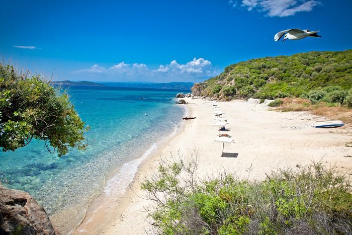 Остров в остров Уранополис цены