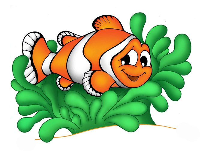 Clownfish and sea anemone clipart