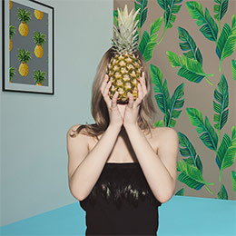 Dekorer - Pineapple Fever