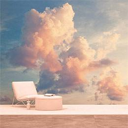 Vinyl Wall Mural - Pinkish clouds