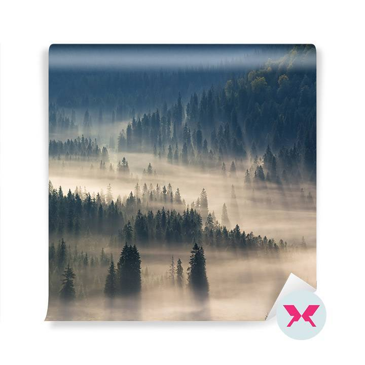 Fototapet - Foggy Forest