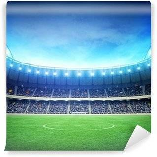 Football stadium Wall Murals