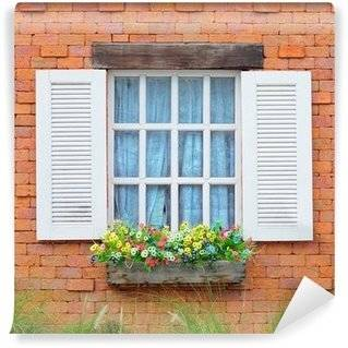 Windows Wall Murals
