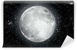 Moon Wall Murals