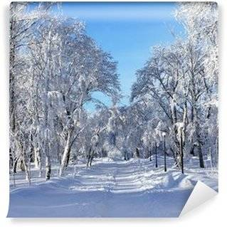 Winter Wall Murals