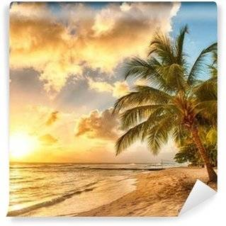 Palm Trees Wall Murals