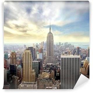 Manhattan Wall Murals