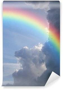 Rainbows Wall Murals