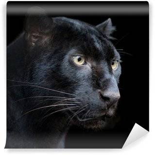 Fototapeten Panther