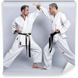 Karate Wall Murals