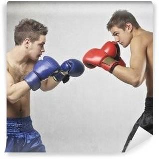 Fotomurales Boxeo