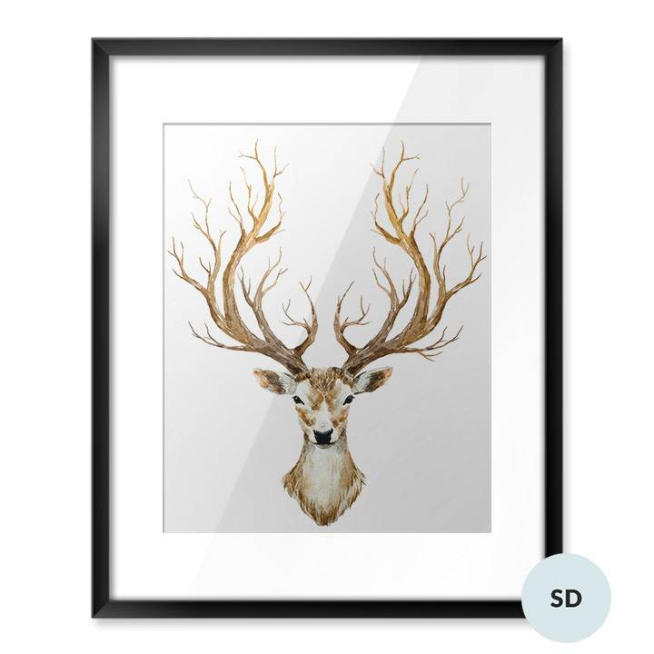 Poster - Watercolor deer