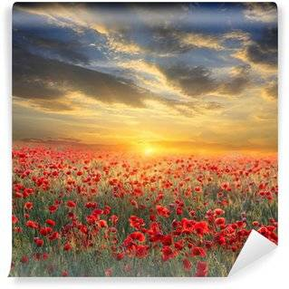 Poppies Wall Murals