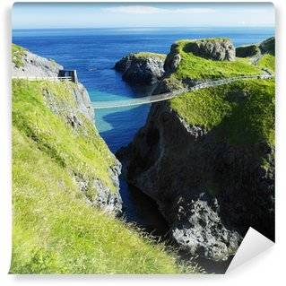 Ireland Wall Murals