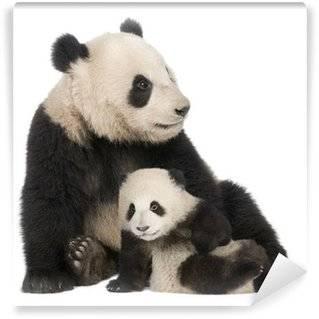 Carte de parati Panda