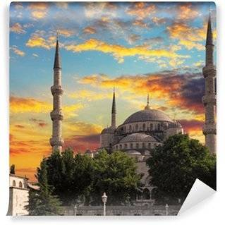 Turkey Wall Murals