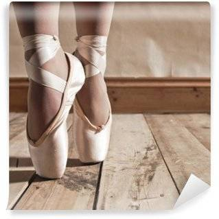 Dancing shoes Wall Murals