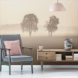 Wall mural - Meadow in milky fog
