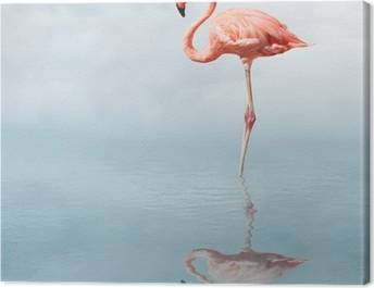 Canvas Flamingo's