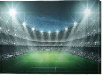 Football stadium Canvas Prints