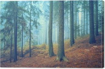 Forest Canvas Prints