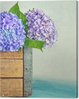 Canvas hortensia's