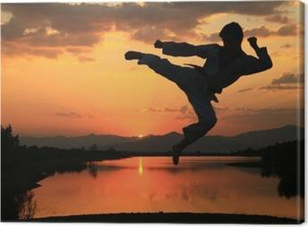 Karate Canvas Prints