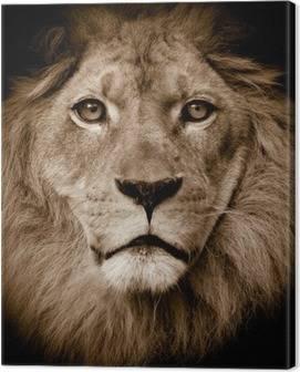 Tableaux sur Toile Lions