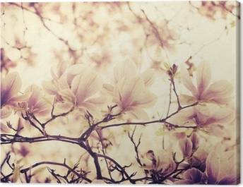 Magnolias Canvas Prints