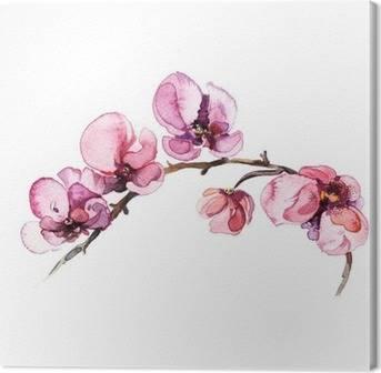 Tableaux sur Toile Orchidées