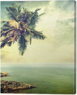Palm Trees Canvas Prints