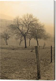 Sepia Canvas Prints