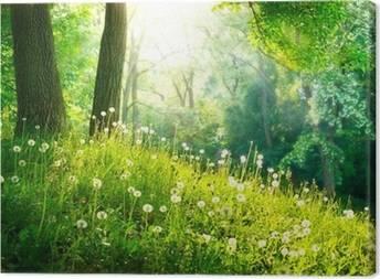 İlkbahar Tuval Baskilar