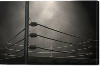 WWE Canvas Prints