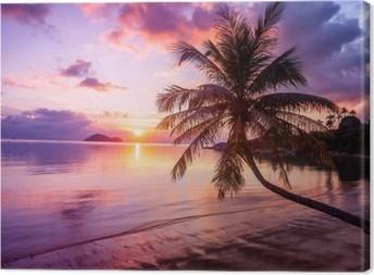 Beach and tropics Canvas Prints