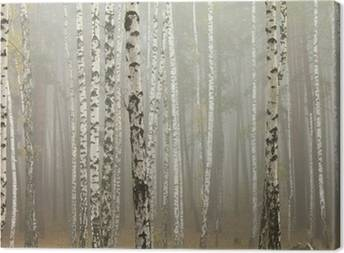 Birches Canvas Prints