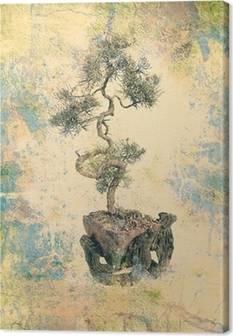 Bonsai Canvas Prints