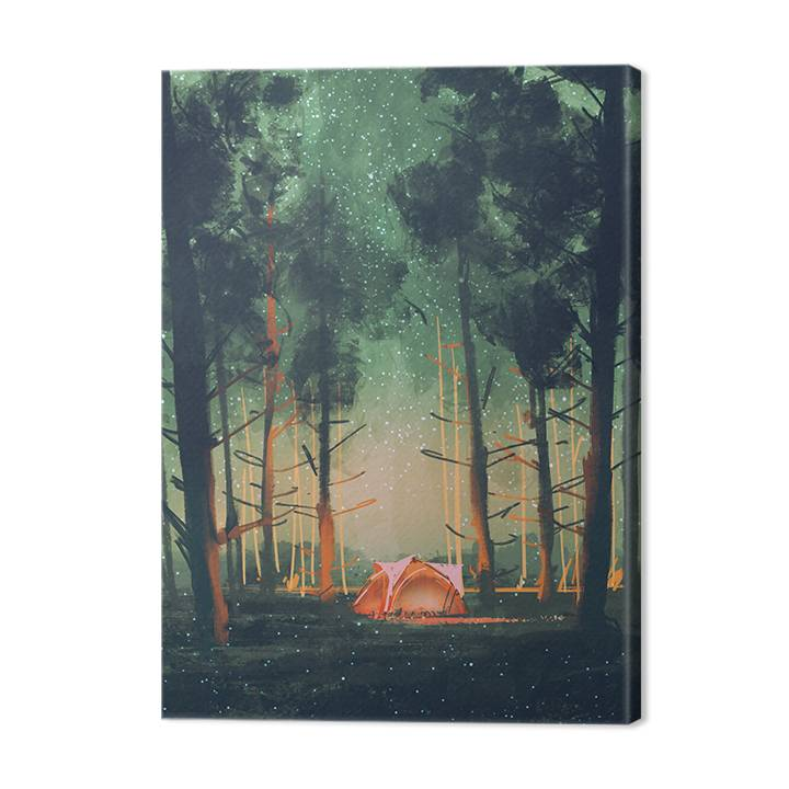 Canvas Print - Night under a tent in the forest