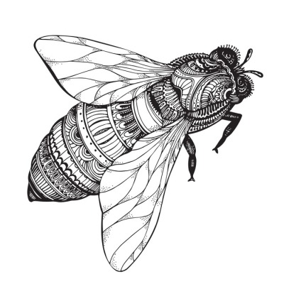 Hand drawn honey bee in zentangle style.