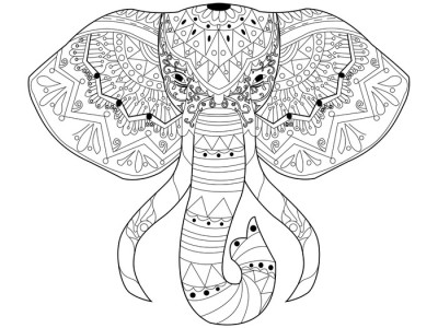 Elephant coloring vector for adults