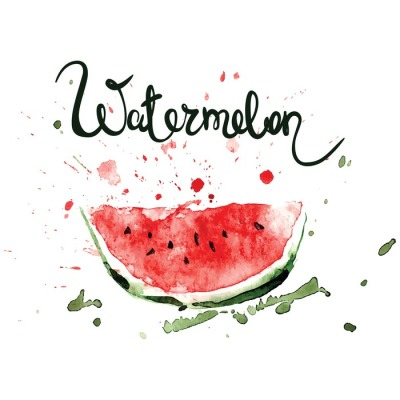 Slice of watermelon/Watercolor illustration with splashes and blots