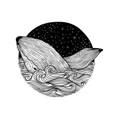 Whale jumping out of the waves on a night starry sky and curl waves background with doodle zentangle elements, design for clothing print, cards,invitations, printing cover.isolated on white background