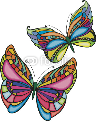 two colored butterflies
