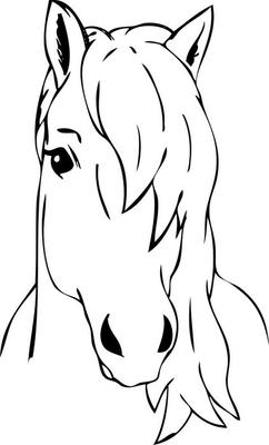 haired horse head