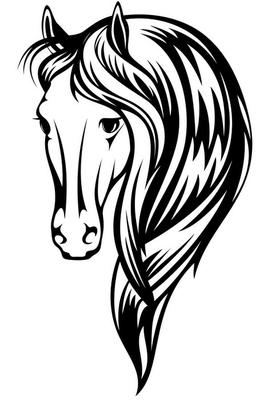 beautiful horse vector illustration