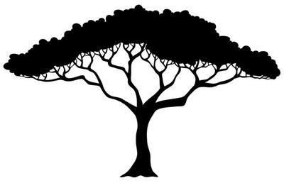 Tropical tree silhouette