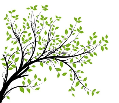 vector set - green decorative branch and leaves