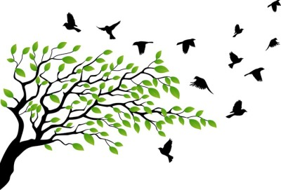 Tree with bird flying