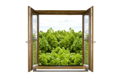 Geöffnetes Fenster